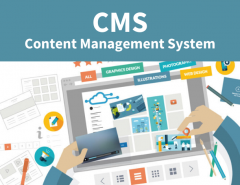 Why your Business needs a Content Management System
